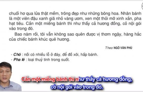 Chõ bánh khúc của dì tôi – Lớp 3 – Tuần 11 – Trang 91 – Tiếng Việt 3 tập 1