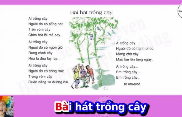 Lớp 3 – Bài hát trồng cây