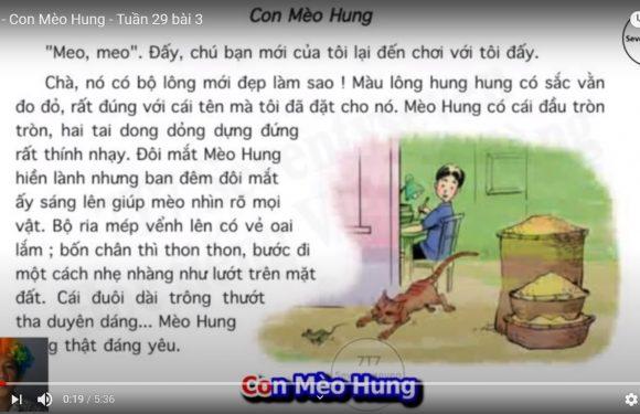 Lớp 4 – Con Mèo Hung – Tuần 29 bài 3