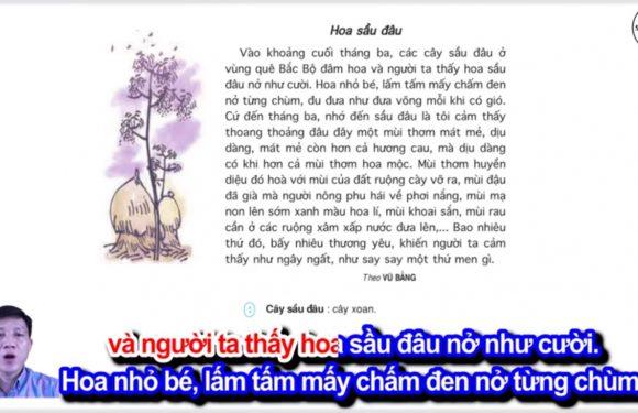 Hoa sầu đâu – Lớp 4 – Tuần 23 – Bài 4