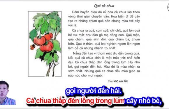 Quả cà chua – Lớp 4 – Tuần 23 – Bài 6