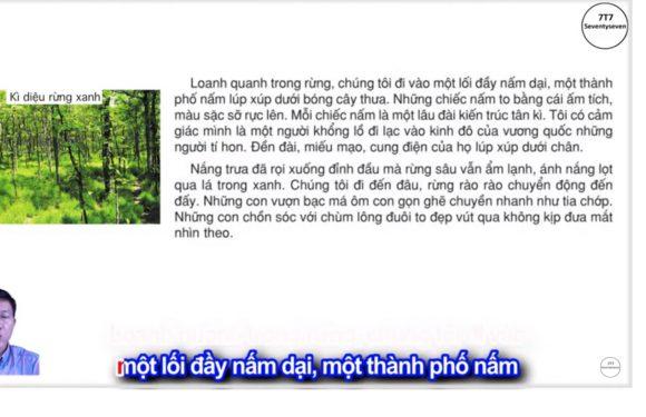 Kì diệu rừng xanh – Lớp 5 – Tuần 8 – Trang 75