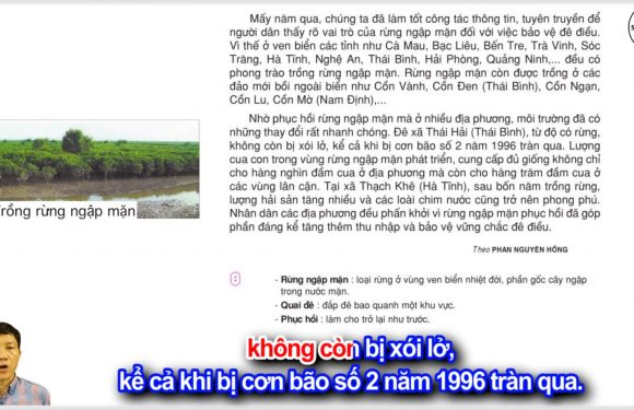 Trồng rừng ngập mặn – Lớp 5 – Tuần 13 – Trang 129