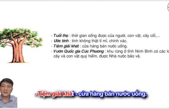 Bạn có biết – Lớp 2 – Tuần 28 – Trang 85 – Tiếng Việt 2 tập 2