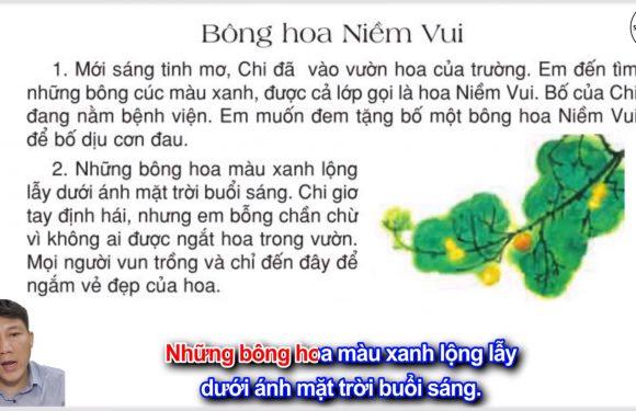 Bông hoa Niềm Vui – Lớp 2 – Tuần 13 – Trang 104 – Tiếng Việt 2 tập 1