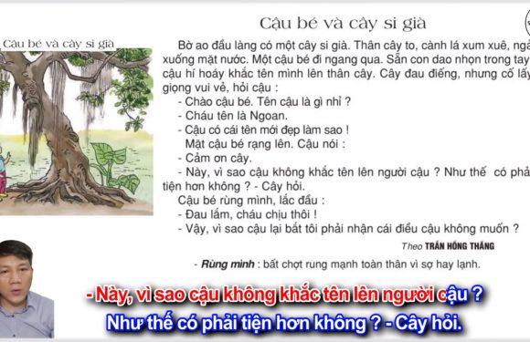 Cậu bé và cây si già – Lớp 2 – Tuần 29 – Trang 96 – Tiếng Việt 2 tập 2