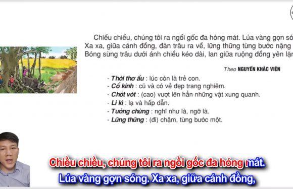 Cây đa quê hương – Lớp 2 – Tuần 29 – Trang 93 – Tiếng Việt 2 tập 2