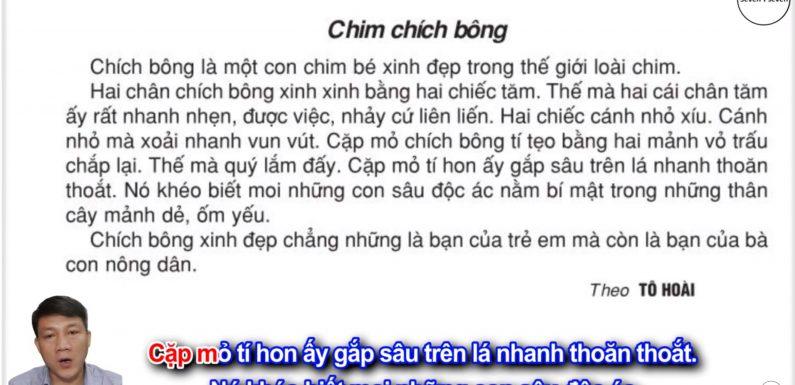 Chim chích bông – Lớp 2 – Tuần 21 – Trang 30 – Tiếng Việt 2 tập 2