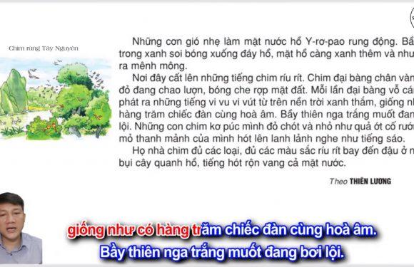 Chim rừng Tây Nguyên – Lớp 2 – Tuần 22 – Trang 34 – Tiếng Việt 2 tập 2