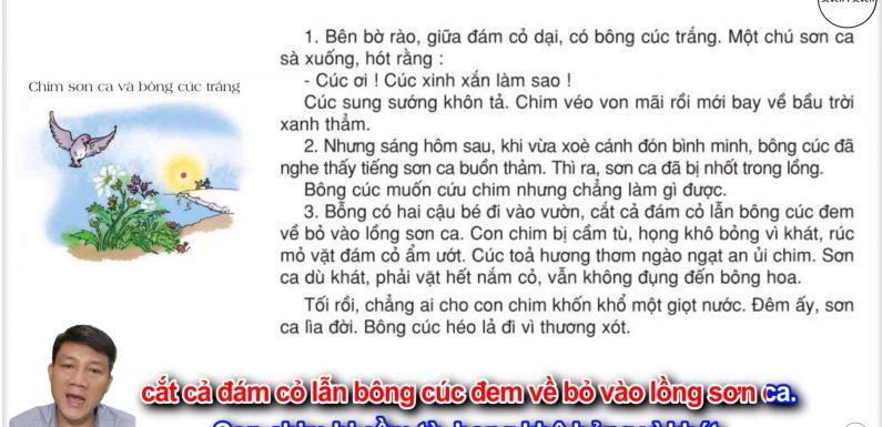 Chim sơn ca và bông cúc trắng – Lớp 2 – Tuần 21 – Trang 23 – Tiếng Việt 2 tập 2