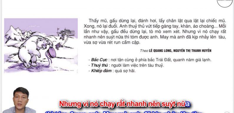 Gấu trắng là Chúa tò mò – Lớp 2 – Tuần 24 – Trang 53 – Tiếng Việt 2 tập 2