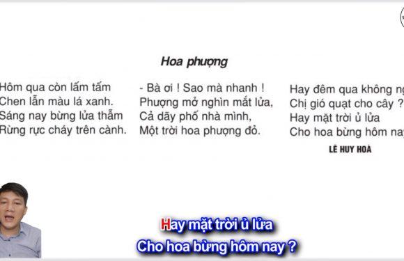 Hoa phượng – Lớp 2 – Tuần 29 – Trang 97 – Tiếng Việt 2 tập 2
