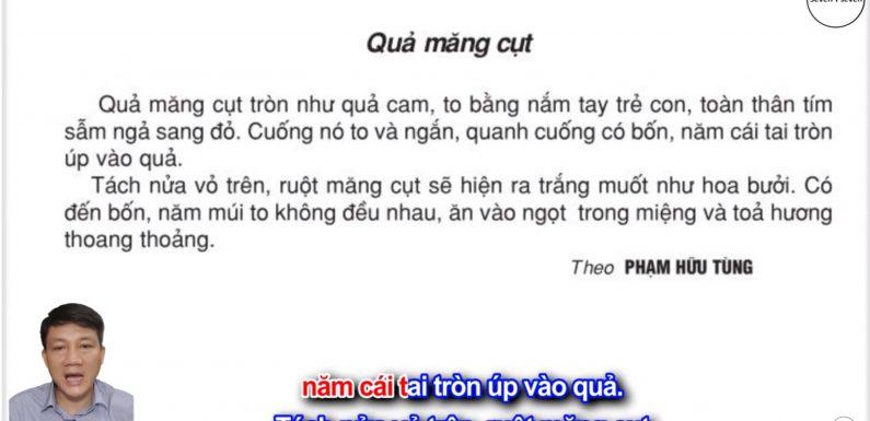 Quả măng cụt – Lớp 2 – Tuần 28 – Trang 90 – Tiếng Việt 2 tập 2