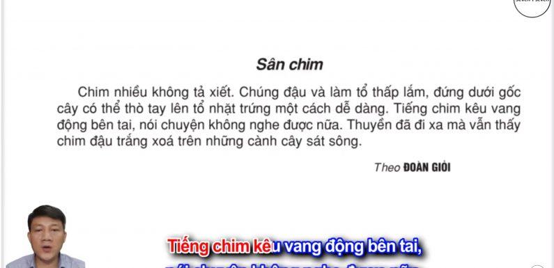 Sân chim – Lớp 2 – Tuần 21 – Trang 29 – Tiếng Việt 2 tập 2