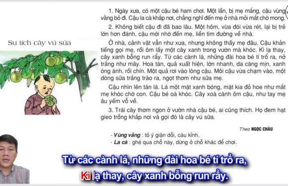 Sự tích cây vú sữa – Lớp 2 – Tuần 12 – Trang 96 – Tiếng Việt 2 tập 1