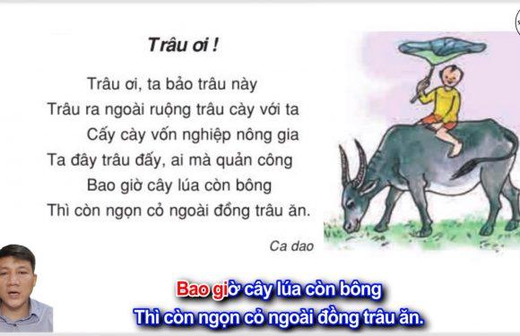 Trâu ơi ! – Lớp 2 – Tuần 16 – Trang 136 – Tiếng Việt 2 tập 1