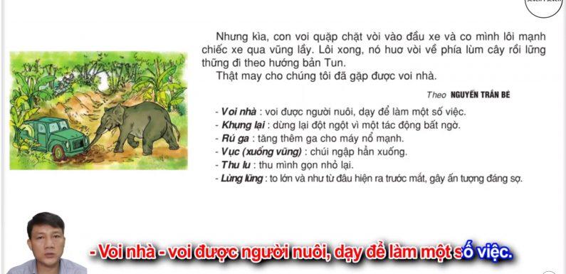 Voi nhà – Lớp 2 – Tuần 24 – Trang 56 – Tiếng Việt 2 tập 2
